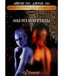 """Айрэн По, Джули По """"Мы из матрицы"""" Книга 1"""